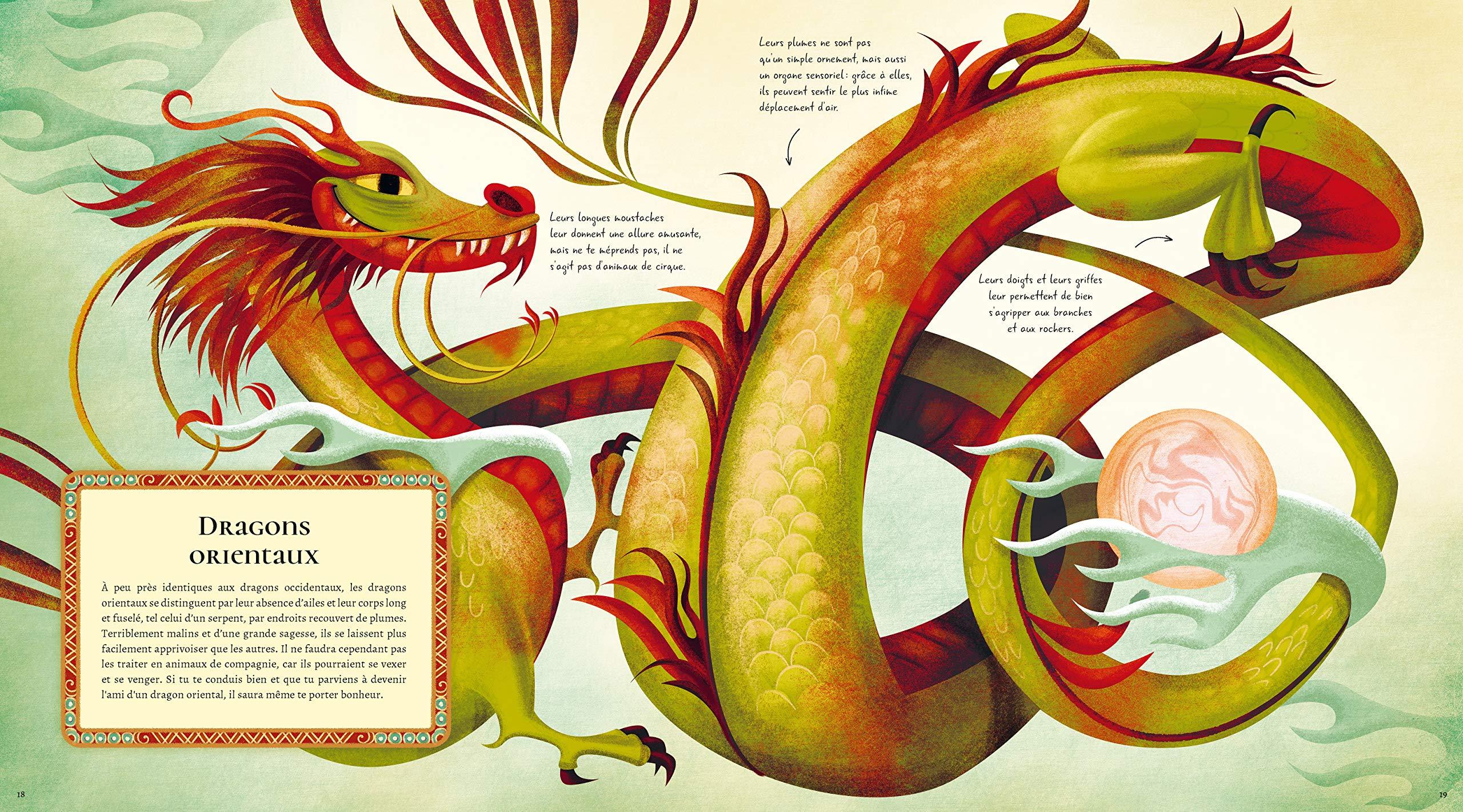 Le grand livre des dragons de Anna Lang et Federica Magrin